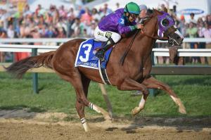 140517-california-chrome-2206_ca784a6b59999fd7c6d23ea28b09e012