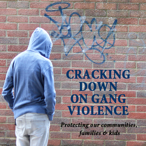 Anti Street Gang Legislation