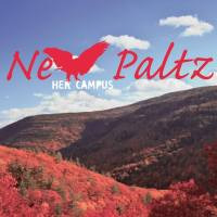 Elmont Native, Goldie Harrison, Shines at SUNY New Paltz