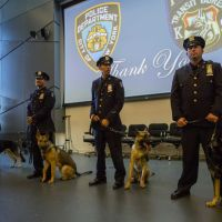 Graduating MTA Dogs Named After NYPD Fallen Officers